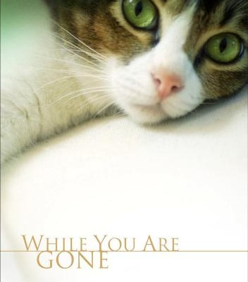 While you are gone DVD